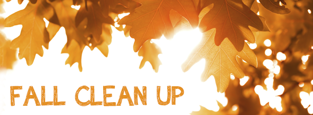 fall-clean-up-image